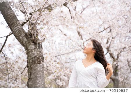 櫻桃女人肖像 76510637