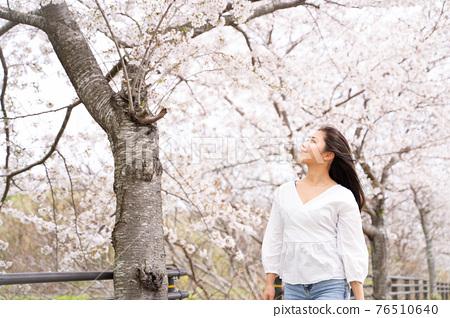 櫻桃女人肖像 76510640