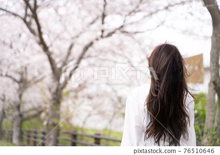 櫻桃女人肖像 76510646