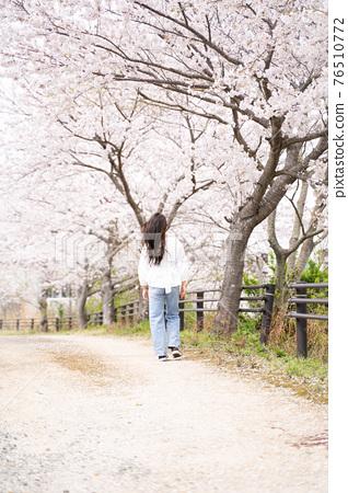 櫻桃女人肖像 76510772