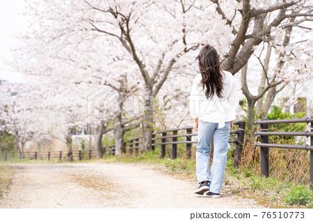 櫻桃女人肖像 76510773