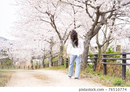 櫻桃女人肖像 76510774