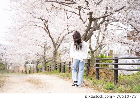 櫻桃女人肖像 76510775