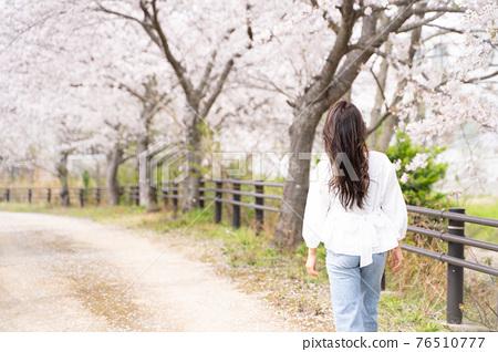 櫻桃女人肖像 76510777