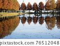 秋天的倒影 76512048
