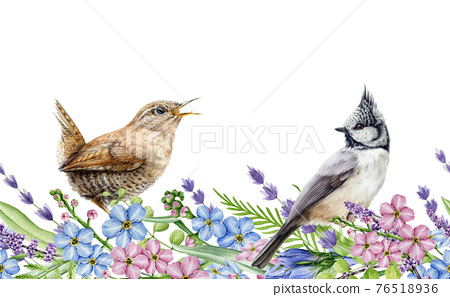 Spring flower seamless border. Watercolor illustration. Natural realistic spring flowers and small birds in elegant ornament. Hand drawn tender blossoms and wild garden birds in seamless border 76518936