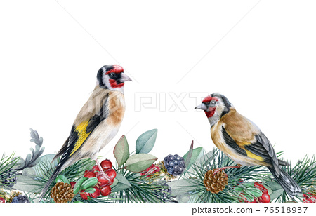Winter floral seamless border. Two goldfinch birds on endless flower decoration. Seasonal seamless border and wild forest finch birds. Rustic decor with red berries, pine branches and blackberries 76518937