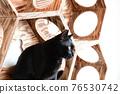 毛孩 貓 貓咪 76530742