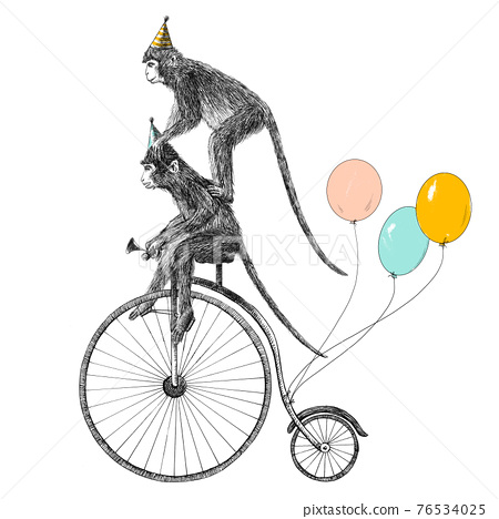 Beautiful stock illustration with cute hand drawn safari animal monkey on the bike with baloons. Birthday party. 76534025