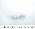 tropical rain forest forest covered by  morning fog 76539743