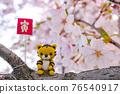 tiger, tigers, cherry blossom 76540917