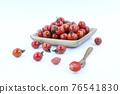 蕃茄 番茄 蔬菜 76541830