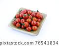 蕃茄 番茄 蔬菜 76541834