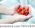 蕃茄 番茄 手 76541839