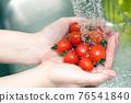 蕃茄 番茄 手 76541840
