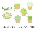 肉質植物 植物 植物學 76550206