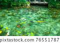 莫奈的池塘 76551787