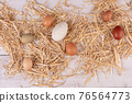 eggs of various sizes and colors 76564773