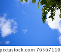 blue sky, sky, tender green 76567110