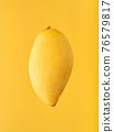 Whole mango levitating against background of same colour. 76579817