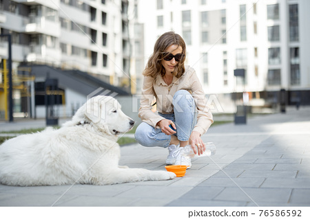 Woman gives a water in a bowl to her dog 76586592