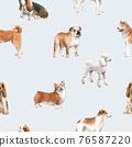 Beautiful seamless pattern with cute watercolor hand drawn dog breeds Cocker spaniel Greyhound Basset hound Poodle Bulldog and Welsh corgi pembroke . Stock illustration. 76587220