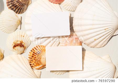 Sea shells styled stock scene 76597290