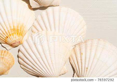 Sea shells styled stock scene 76597292