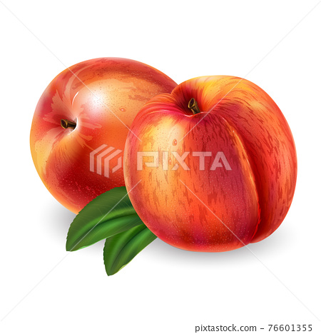 Peaches with leaves on a white background. 76601355