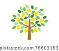 樹木 樹 木頭 76603163