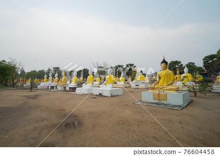 Row of Buddha statues. Old ruins of a temple in Wat Phai Rong Wua temple, Song Phi Nong, Suphan Buri. Famous tourist attraction landmark. Thai History architecture. 76604458
