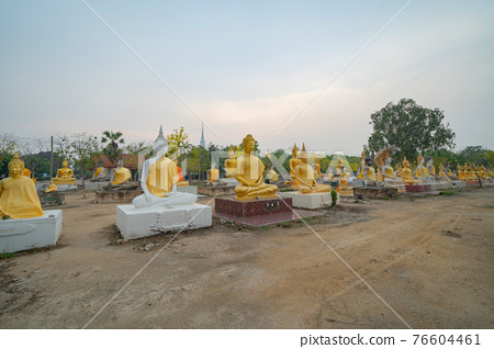 Row of Buddha statues. Old ruins of a temple in Wat Phai Rong Wua temple, Song Phi Nong, Suphan Buri. Famous tourist attraction landmark. Thai History architecture. 76604461
