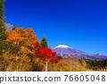 富士山 楓樹 紅楓 76605048