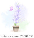 Orchid Flowers inside flower pot with butterfly watercolor illustration 76608051