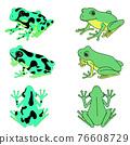 青蛙 樹蛙 兩棲的 76608729