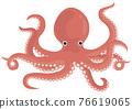 章魚 矢量 海鮮 76619065