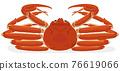螃蟹 蟹 雪蟹 76619066