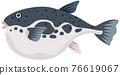 河豚魚 河豚 魚 76619067