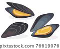貽貝 淡菜 紫貽貝 76619076