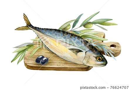 Sea fish with herbs and olives. Watercolor illustration. Mediterranean tasty food image. Food realistic element. Healthy organic mackerel fish and herbs on the wood cutting board. On white background 76624707