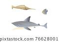 Ocean Underwater Animals with Floating Shark Vector Set 76628001