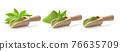 matcha green tea powder in wood scoop and leaf on white 76635709