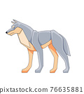 Gray wolf. Cartoon vector flat illustration isolated on a white background 76635881