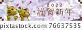 new year, new years, happy new year 76637535