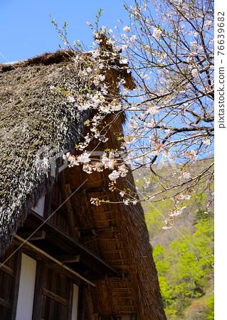 Gokayama village's village 76639682