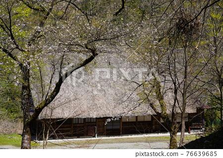 Gokayama village's village 76639685