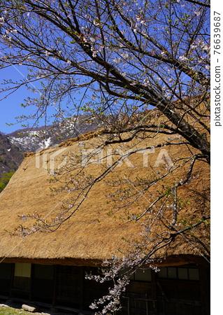 Gokayama village's village 76639687