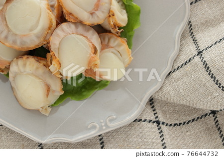 scallop, japanese scallop, fresh seafood 76644732