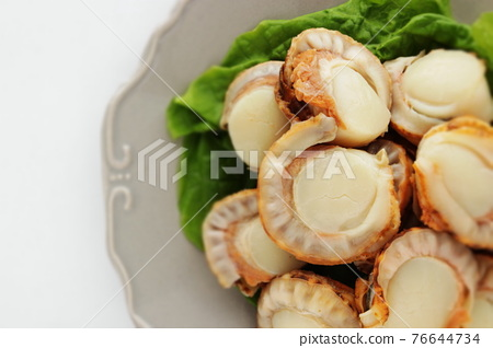 scallop, japanese scallop, fresh seafood 76644734