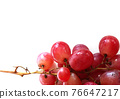 Glowing ripe berries of red grapes 76647217